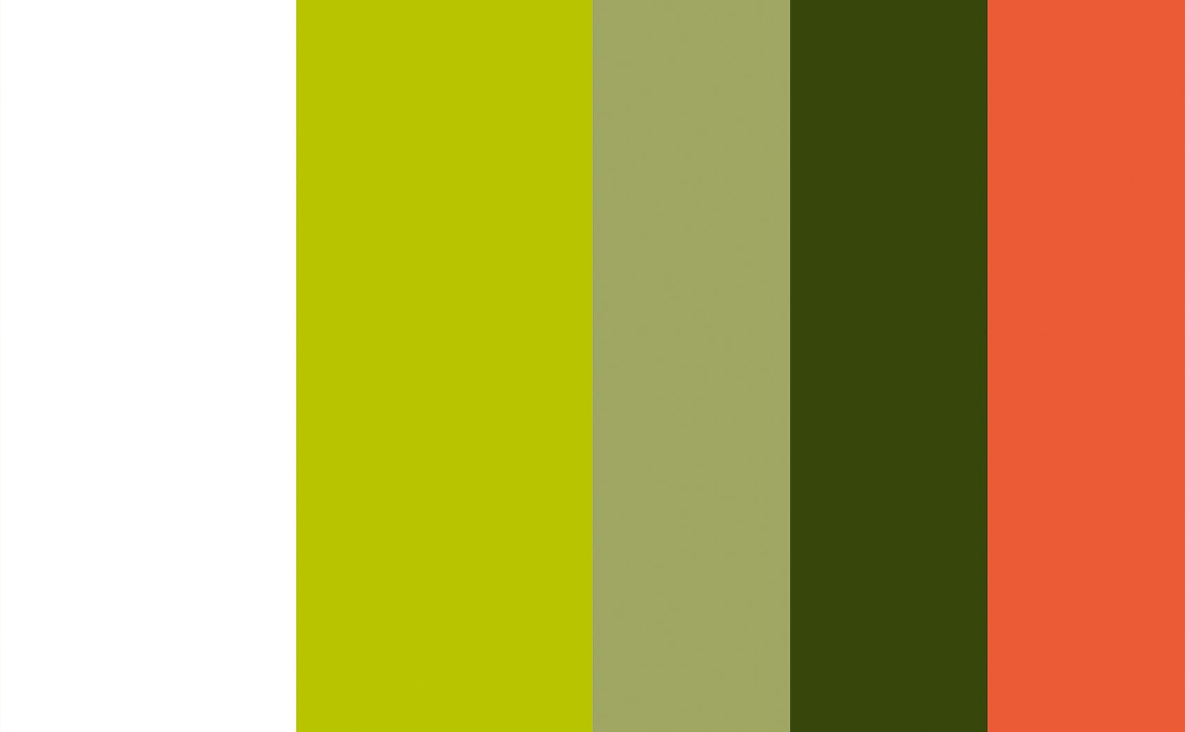 Farbwahl im Corporate Design für MEWAIKI e.V.